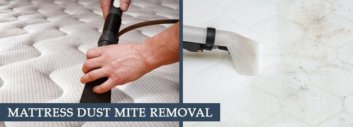 Remove Dust Mites From Mattress