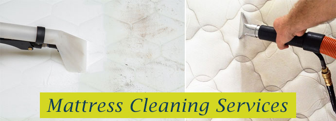 Professional Mattress Cleaning Sanderston