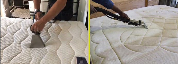 Trusted Mattress Cleaning Paradise