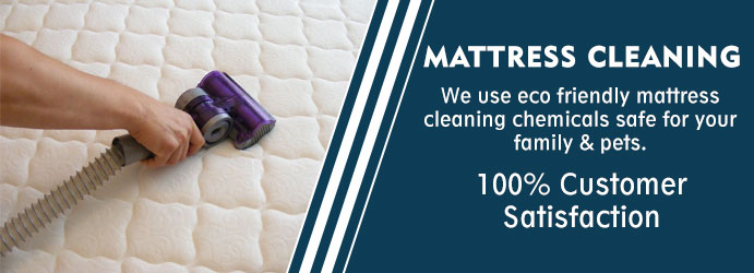 Mattress Cleaning Theodore