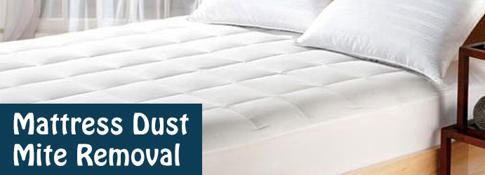 Mattress Dust Mite Removal Services-Deakin