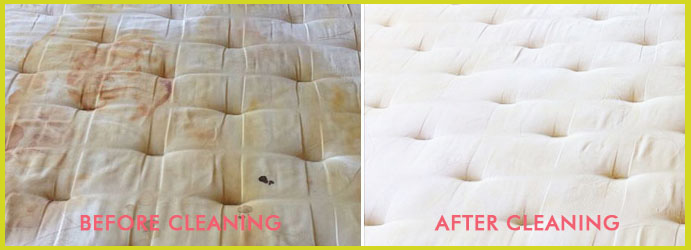 Mattress Urine Removal Services