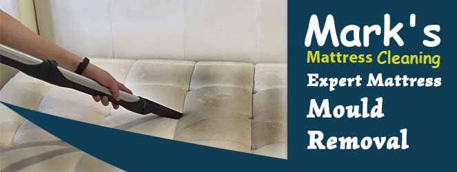 Expert Mattress Mould Removal Services