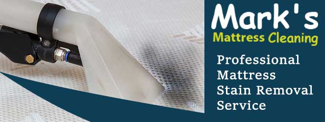 Professional Mattress Stain Removal-Service