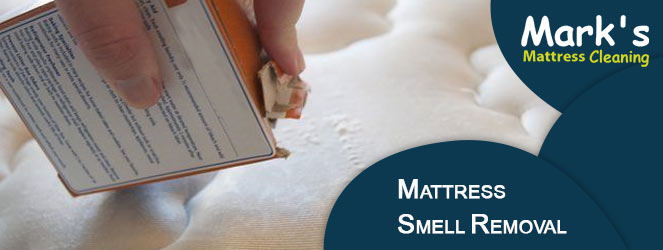 Mattress Smell Removal