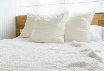 Mattress Mould Removal Treatment Hobart